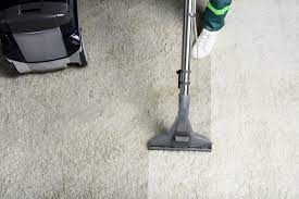 Things You Need to Know About Carpet Cleaning Sutherland Shire